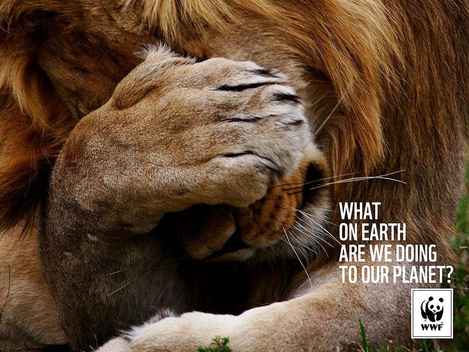 social-awareness-powerful-animal-ads-49