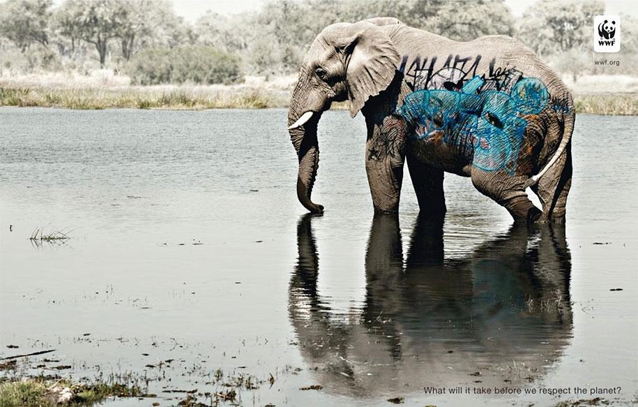 social-awareness-powerful-animal-ads-51