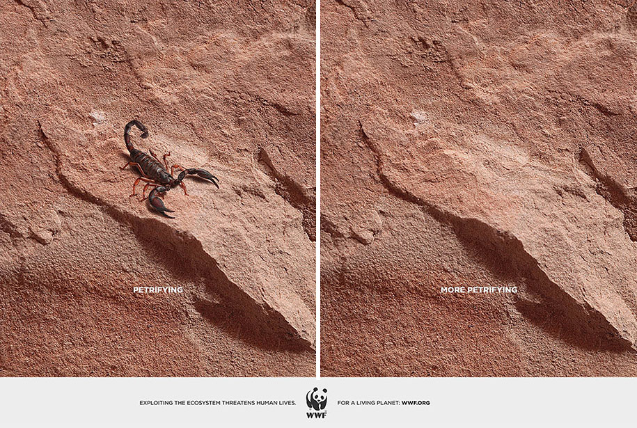 social-awareness-powerful-animal-ads-8