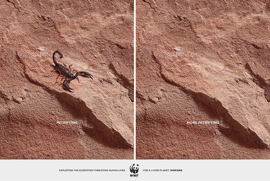 social-awareness-powerful-animal-ads-8