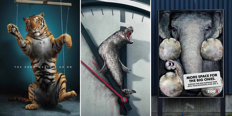Social Awareness Powerful Animal Ads