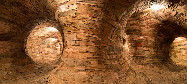 Artist Builds A Giant Root System That You Can Explore