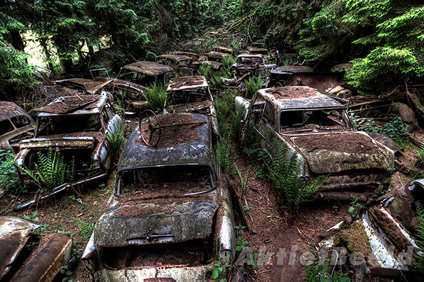 chatillon-car-graveyard-abandoned-cars-vehicle-cemetery-10