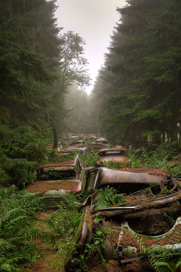 chatillon-car-graveyard-abandoned-cars-vehicle-cemetery-rosanne-de-lange-4