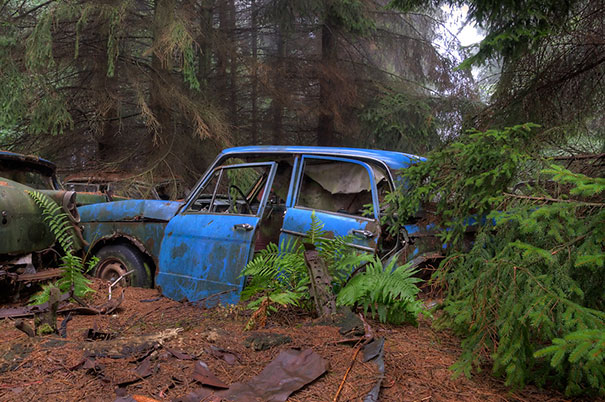 chatillon-car-graveyard-abandoned-cars-vehicle-cemetery-rosanne-de-lange-5