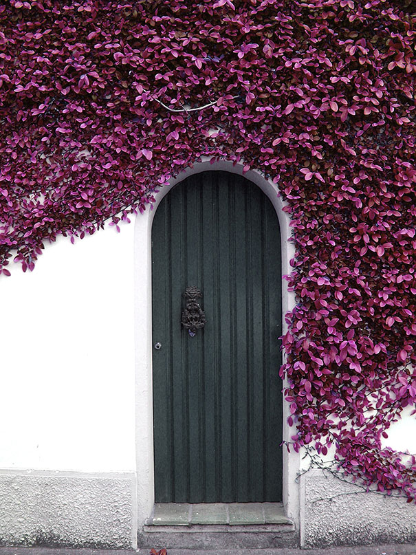 doors-door-decorations-exterior-design-art-15