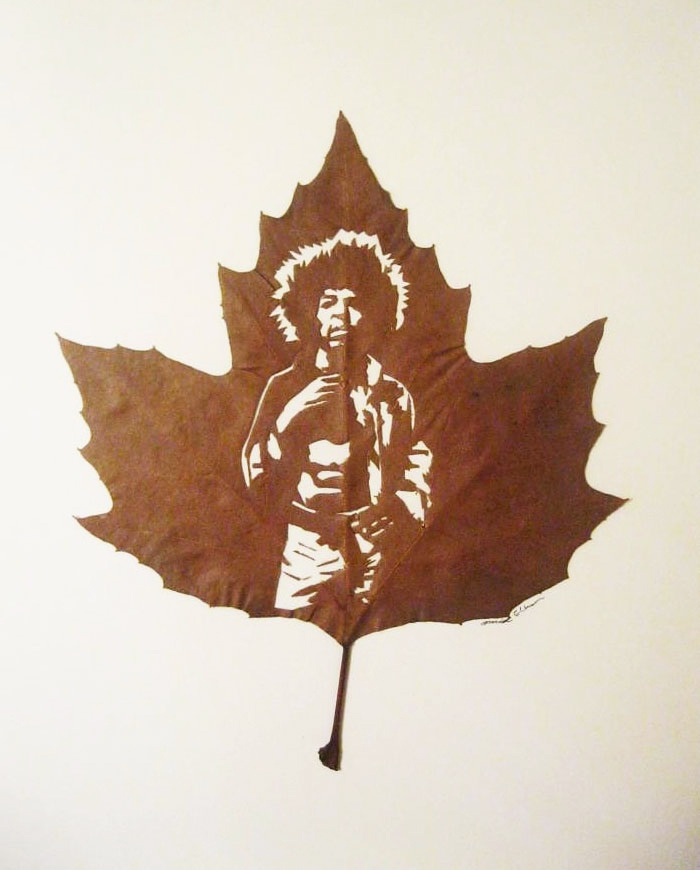 intricate-leaf-cuttings-omid-asadi-11