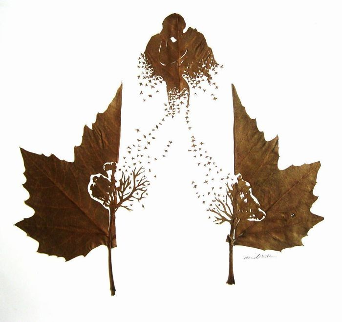 intricate-leaf-cuttings-omid-asadi-13