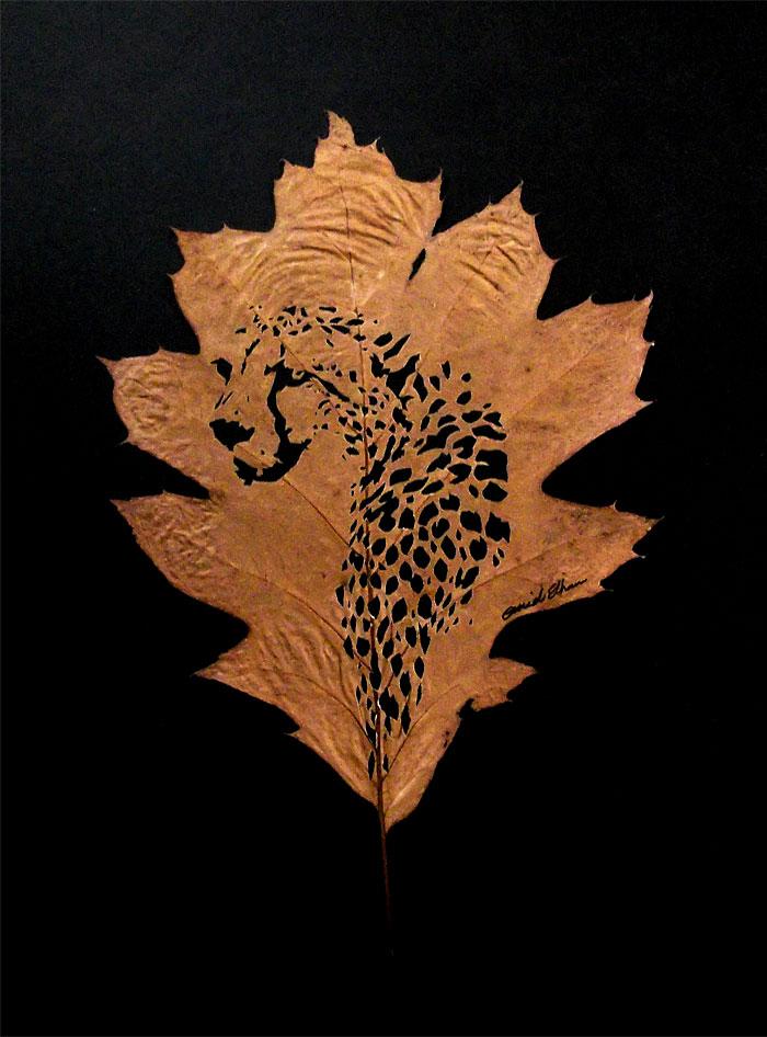 intricate-leaf-cuttings-omid-asadi-5