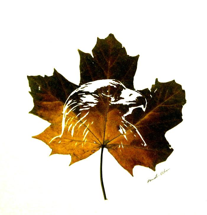 intricate-leaf-cuttings-omid-asadi-7