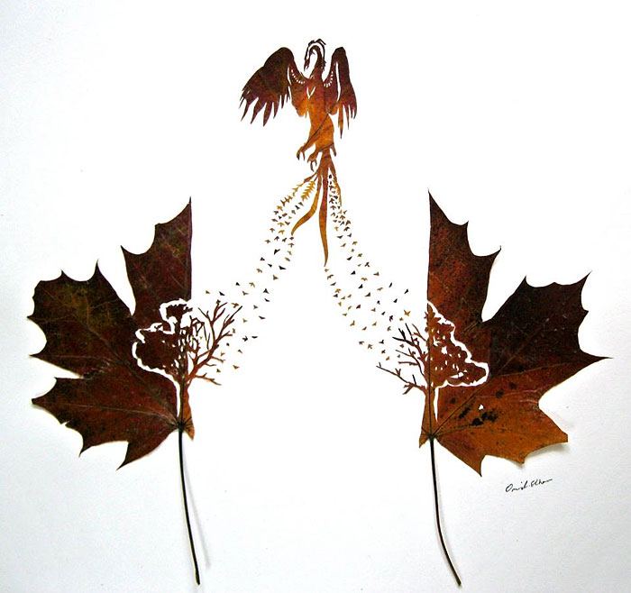intricate-leaf-cuttings-omid-asadi-8