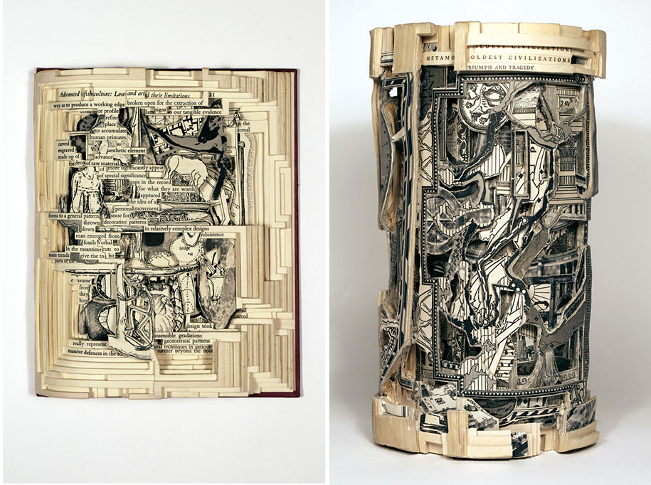 book-surgeon-carvings-art-brian-dettmer-33