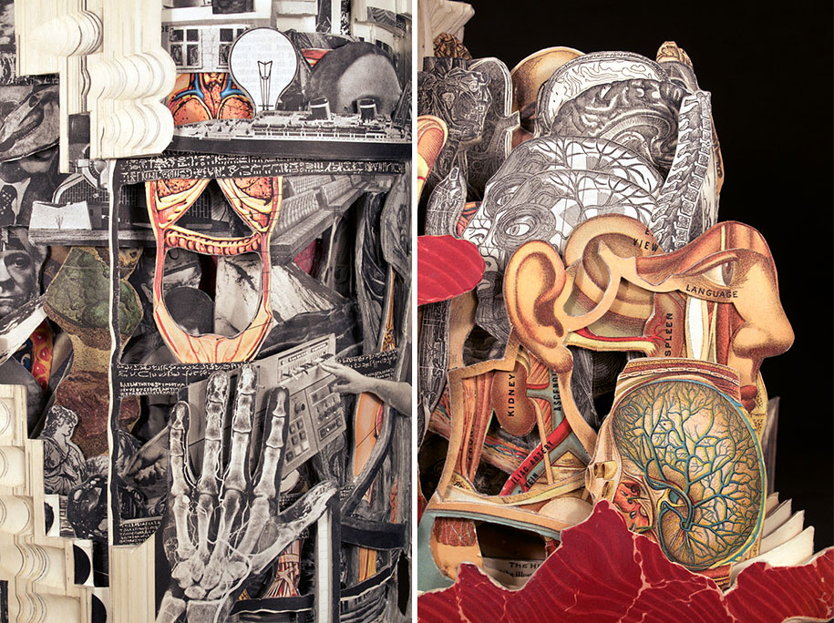 book-surgeon-carvings-art-brian-dettmer-36