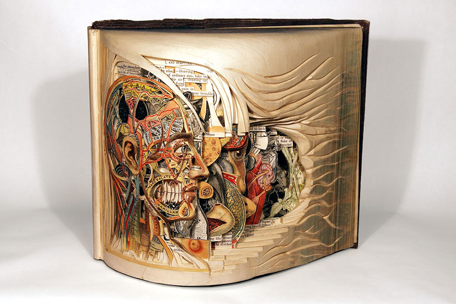 book-surgeon-carvings-art-brian-dettmer-38