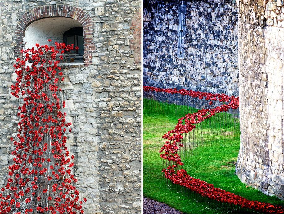 ceramic-poppies-installation-first-world-war-london-tower-11
