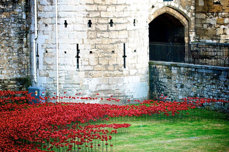 ceramic-poppies-installation-first-world-war-london-tower-6