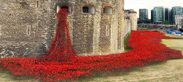 Poppies At Tower Of London Commemorate Each British And - Tower of london river of poppies