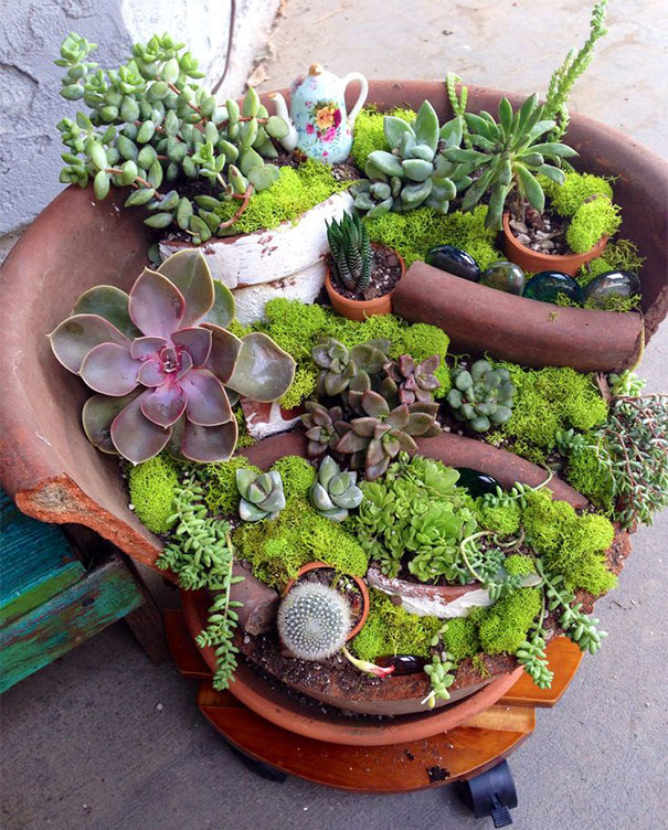 diy-broken-pot-fairy-garden-14