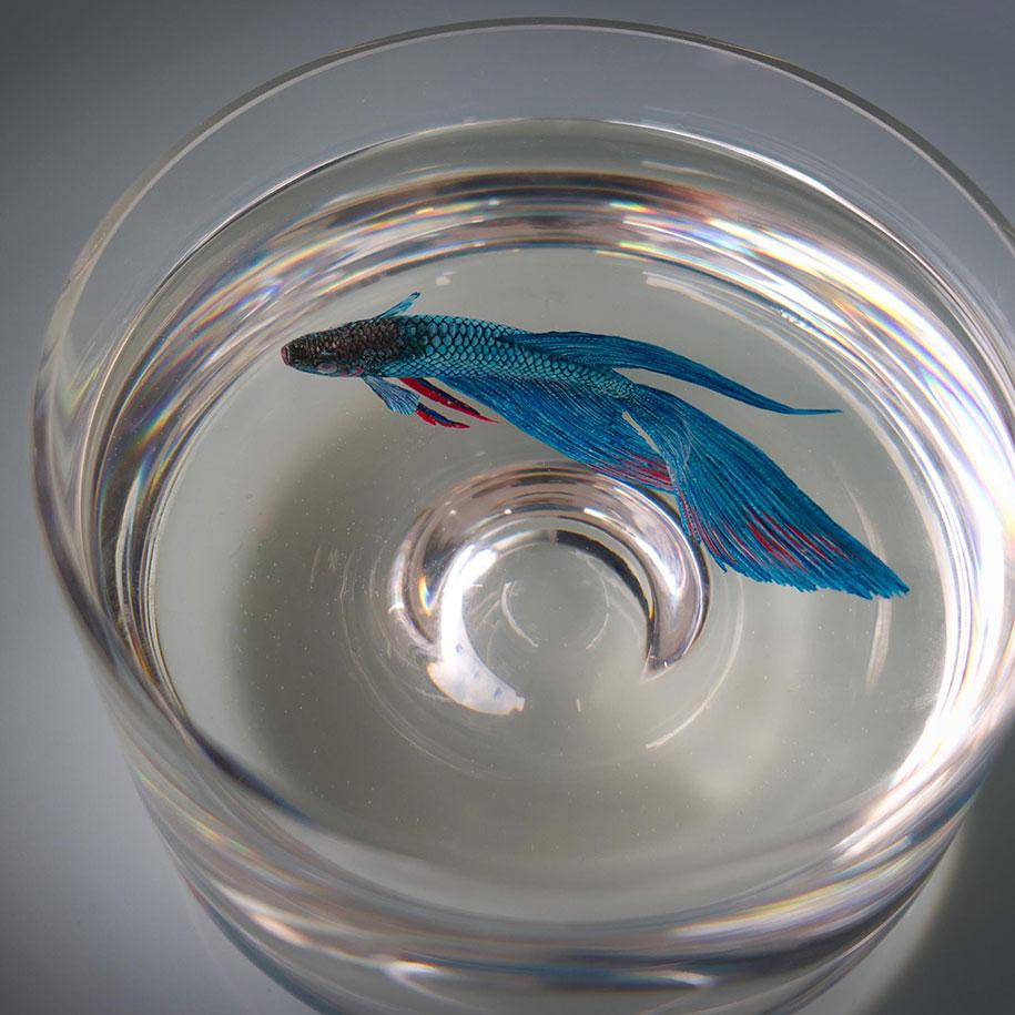 optical-illusion-3d-fish-resin-painting-keng-lye-3