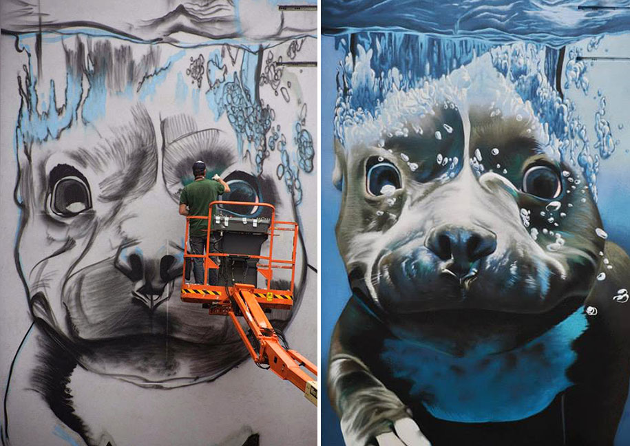 Giant 4 story mural of a diving dog adds colour to a for Diving and fishing mural