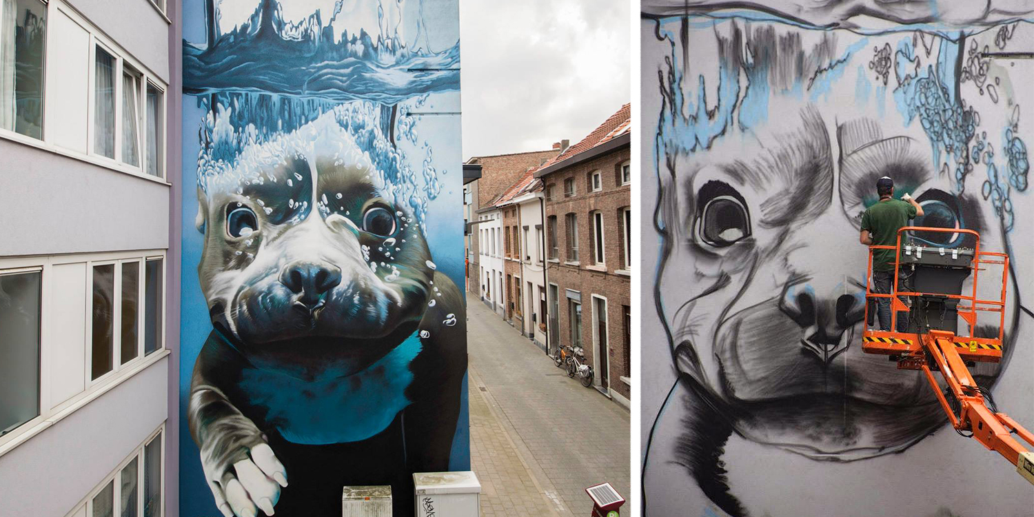 Giant 4 story mural of a diving dog adds colour to a for Mural street art