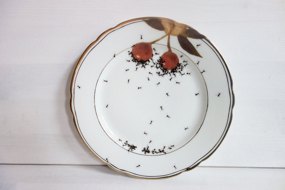 ant-ceramics-vintage-porcelain-evelyn-bracklow-10