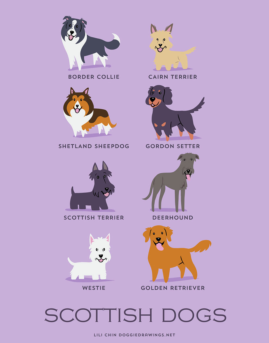 dogs-of-the-world-breeds-posters-lili-chin-3