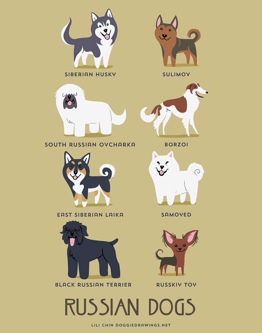 dogs-of-the-world-breeds-posters-lili-chin-4