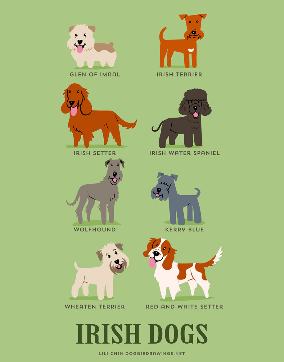 dogs-of-the-world-breeds-posters-lili-chin-6