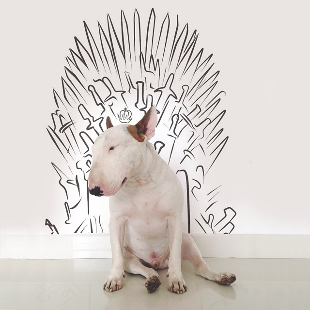 jimmy-choo-bull-terrier-interactive-illustrations-rafael-mantesso-11