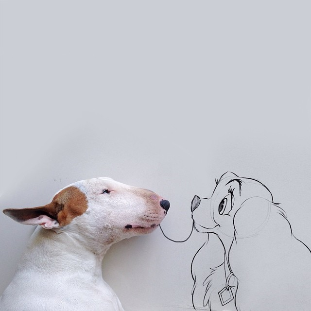 jimmy-choo-bull-terrier-interactive-illustrations-rafael-mantesso-5