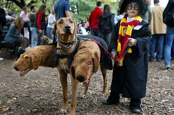 cool-children-halloween-costumes-48
