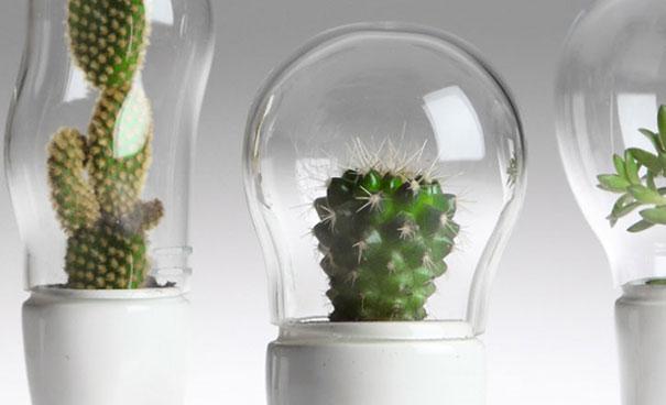 domsai-terrariums-creative-flowerpots-matteo-cibic-1