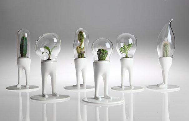 domsai-terrariums-creative-flowerpots-matteo-cibic-2