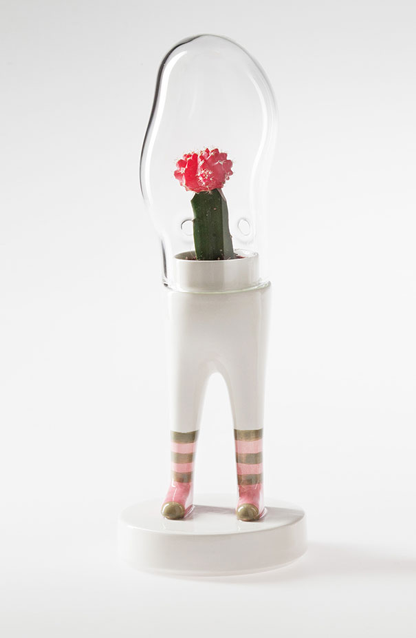 domsai-terrariums-creative-flowerpots-matteo-cibic-6