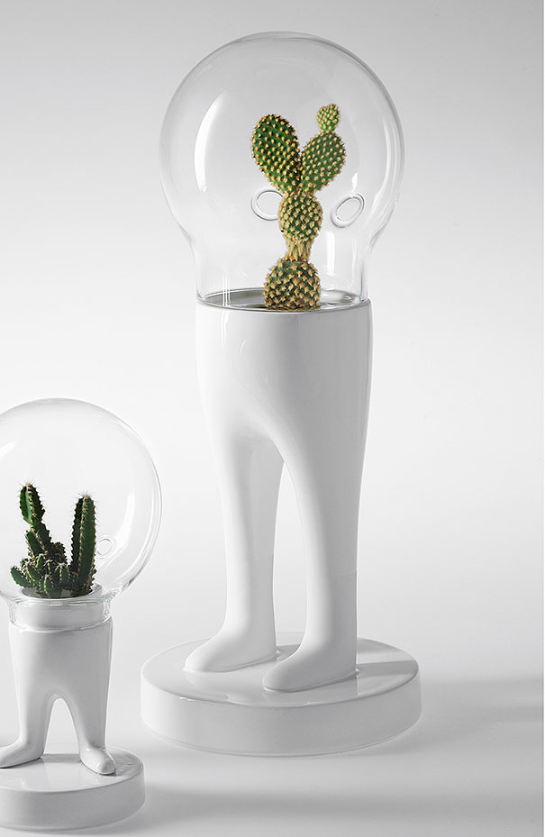 domsai-terrariums-creative-flowerpots-matteo-cibic-8