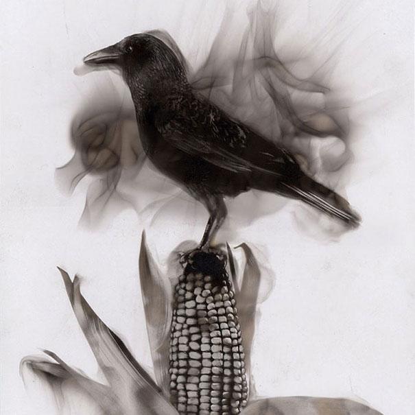 fire-paintings-soot-art-steve-spazuk-9