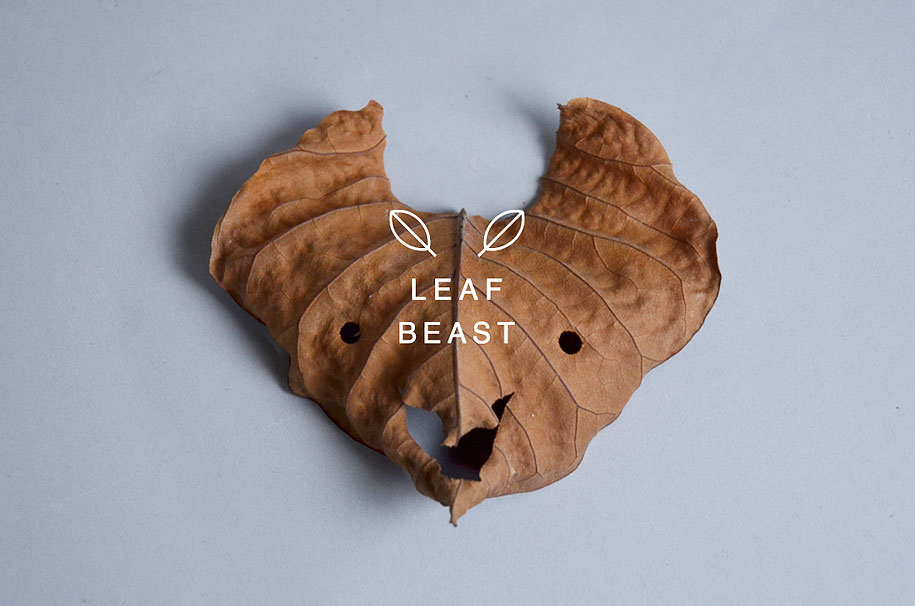 leaf-beast-magnolia-obovata-natural-art-baku-maeda-2