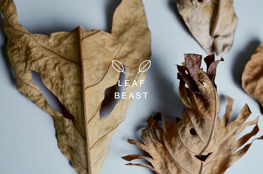 leaf-beast-magnolia-obovata-natural-art-baku-maeda-5