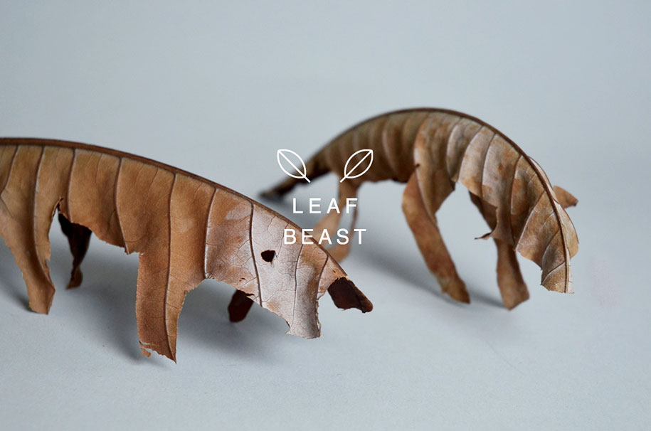 leaf-beast-magnolia-obovata-natural-art-baku-maeda-6