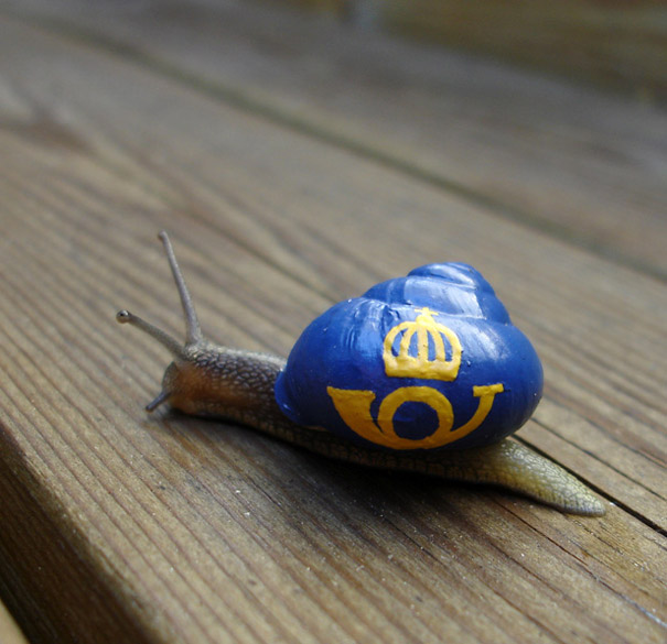 painted-snail-shell-art-3