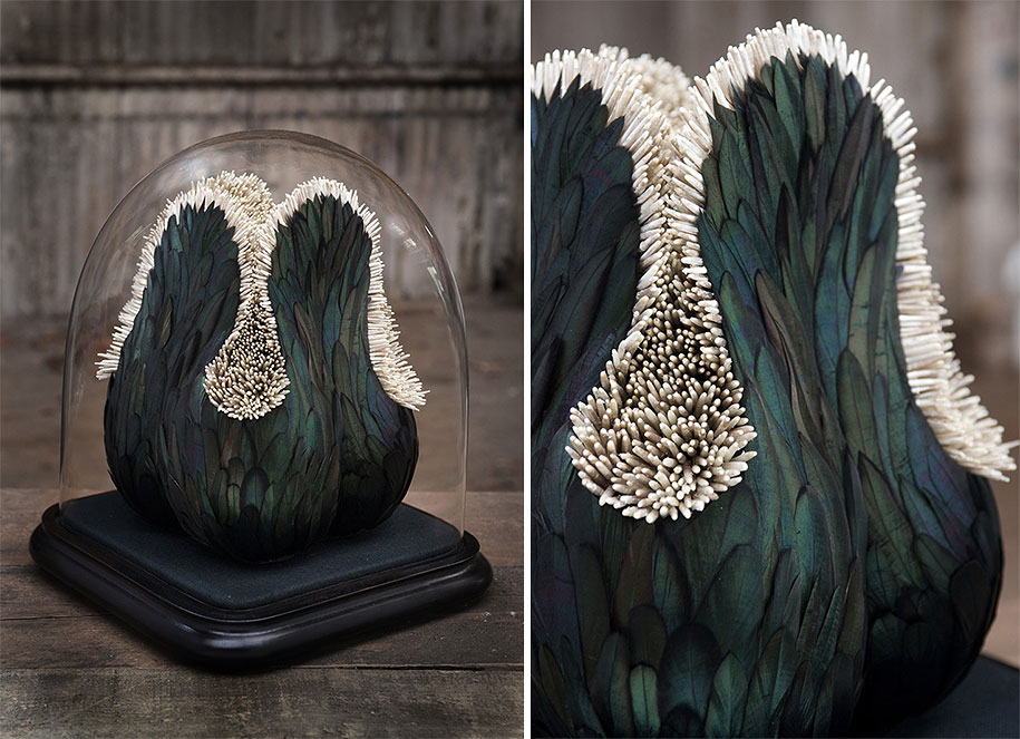 bird-feather-sculpture-art-kate-mccgwire-20