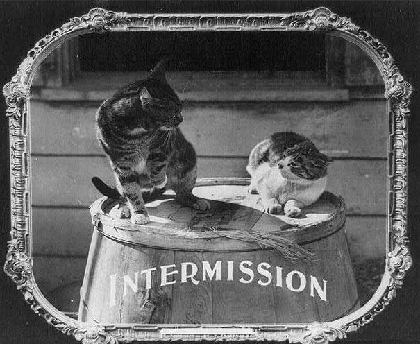 cinema-etiquette-john-scott-edward-van-altena-library-of-congress-prints-12