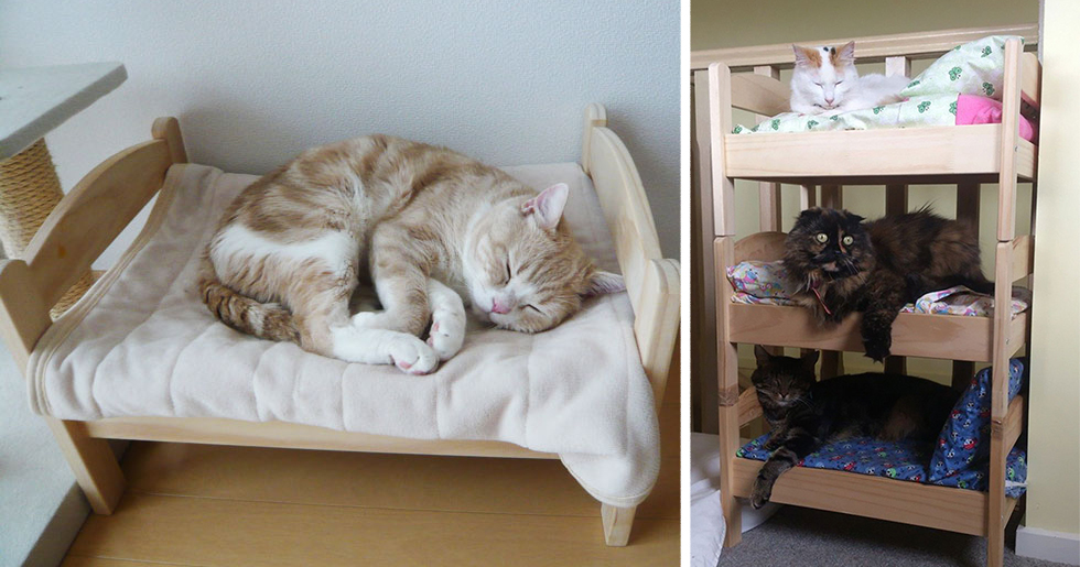 Japanese cat owners re purposed ikea s doll beds for cats - Sofas para gatos ...