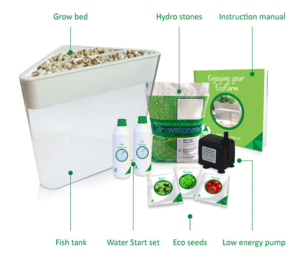 ecofarm-aquaponic-food-production-aquaculpture-hydroponics-fish-tank-3