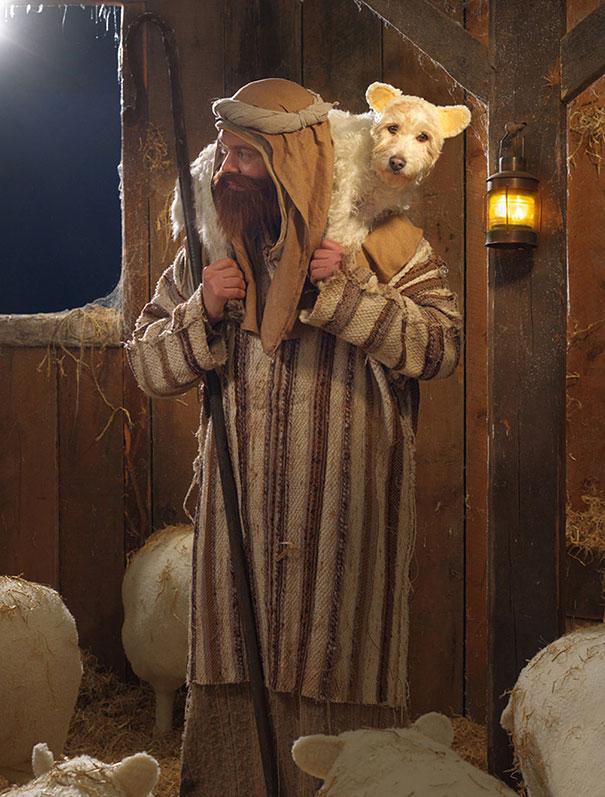 christmas-dog-costume-holiday-card-peter-thorpe-1