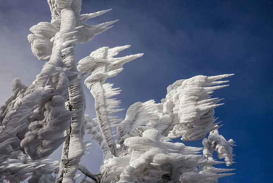 mount-javornik-slovenia-winter-photography-marko-korosec-4