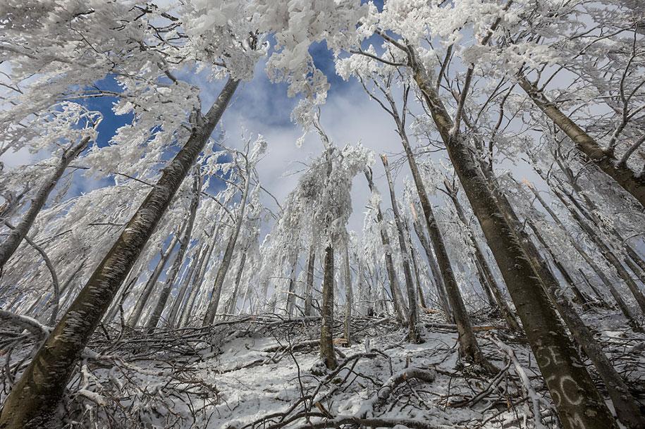mount-javornik-slovenia-winter-photography-marko-korosec-8