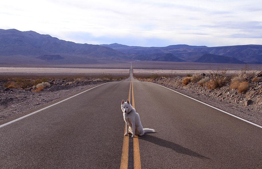 wolf-dog-adventures-travel-photography-john-stortz-10