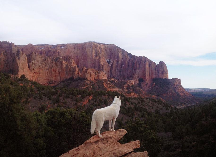 wolf-dog-adventures-travel-photography-john-stortz-13